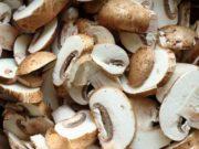 Cara-budidaya-jamur-merang